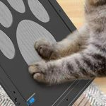 חתול על דלת מעבר לחיות מחמד